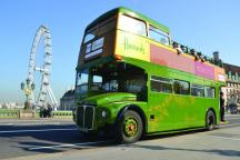 Bus, Boat, Walking, Bike and Coach Sightseeing Tours