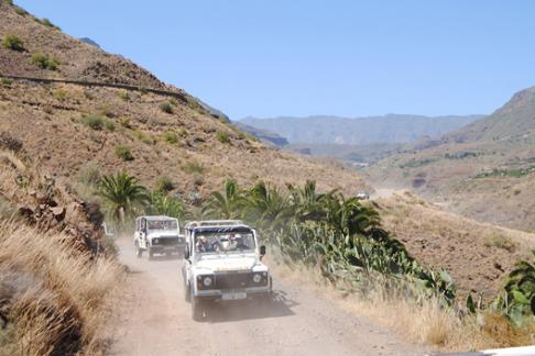 Click to view details and reviews for 4x4 Safari Camels From Other Areas.