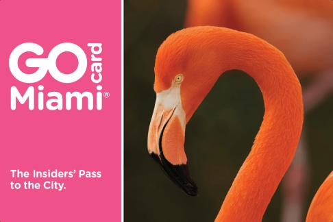 Click to view details and reviews for Go Miami Card.