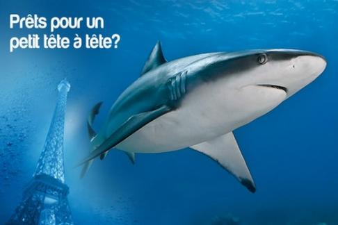 Image For Aquarium de Paris - Valentine's Day Offer