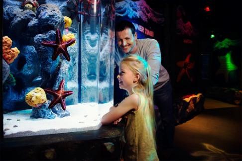 Click to view details and reviews for Aquarium Sea Life Paris Val Deurope.