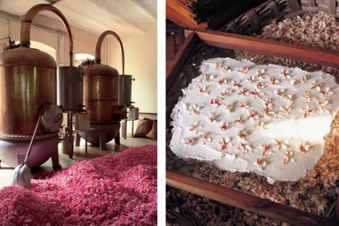 fragonard grasse usine historique offres r ductions et. Black Bedroom Furniture Sets. Home Design Ideas