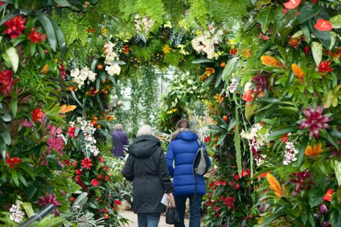Click to view details and reviews for Kew Gardens Standard Ticket.